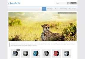 Cheetah (free)