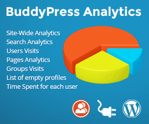 BuddyPress Analytics Plugin